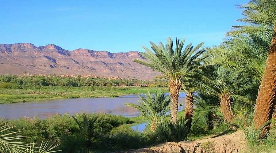 Vallée du Drâa maroc