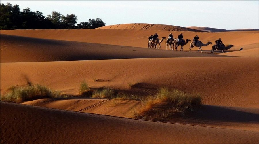 ville Erfoud Maroc